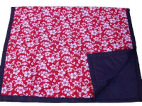 Water-Resistant Blanket /W Carrying Case