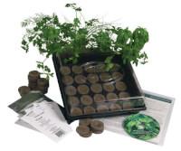 Herb Garden Starter Kit