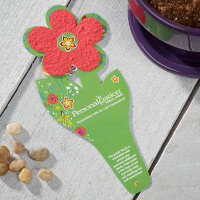 Wildflower Seeded Flower Card