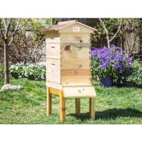 Honey Bee City: Starter Beekeeping Kit
