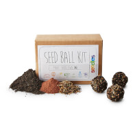 DIY Wildflower Seed Ball Kit