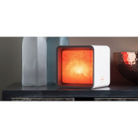 Smart Himalayan Salt Lamp