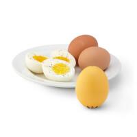 Singing Egg Timer
