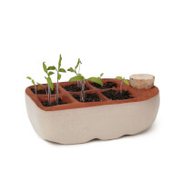 Self-Watering Seedling Starter