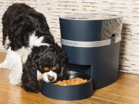 PetSafe®: Smart Feed Automatic Pet Feeder