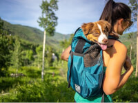 K9 Sport Sack®: Trainer Dog Backpack Carrier