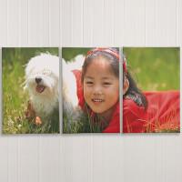 Split Canvas Photo Prints - 3 Panels - 24x26