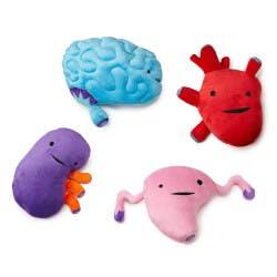 Plush Organs