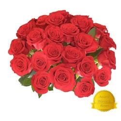 Anniversary Gifts Under $100:25 GIANT Fragrant Long Stem Roses