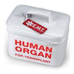 Human Organ Insulated Tote