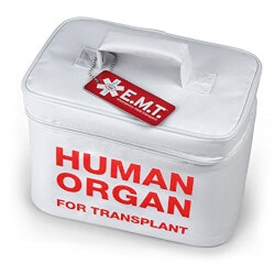 Human Organ Insulated Tote
