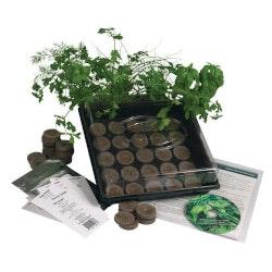 Grandparents Day Gifts:Herb Garden Starter Kit
