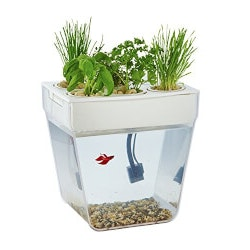 Gifts for GrandmotherUnder $100:Self-Cleaning Fish Tank That Grows Food