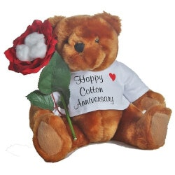 Anniversary Gifts Under $50:Happy 2nd Anniversary Teddy Bear