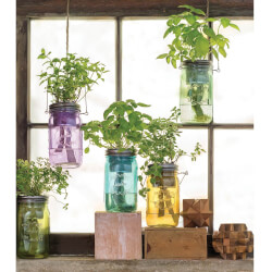 Mason Jar Indoor Herb Garden
