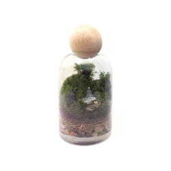 Twig Terrariums: There's No Place Like Ohm