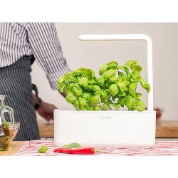 Click & Grow: Smart Garden