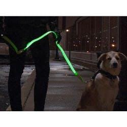 4id: The LED Lite Up Leash