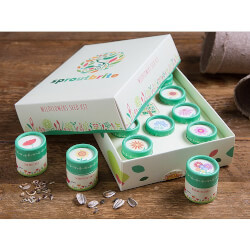 SproutBrite: Wildflowers Seed Kit