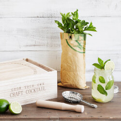 Grow & Craft Mint Mojito Kit