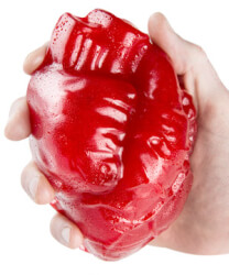 World's Largest Gummy Heart