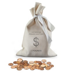Gifts Over $200:The Historic U.S. Pennies Vault Bag 700-Coin..