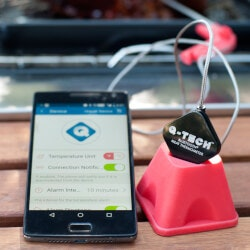 Gadget Gifts (Under $50):Wireless Meat Thermometer