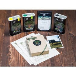 TRE Olive: Olive Tree Adoption & Oil..