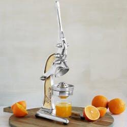 Countertop Citrus Juicer