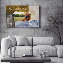 Gifts for Dog Lovers:Canvas With Pets Picture And Name