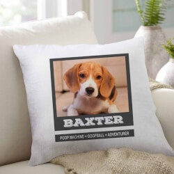 Gifts for Dog Lovers:Customized Pet Pillow