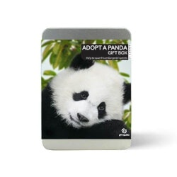 Unique Christmas Gifts for Kids:Adopt A Panda