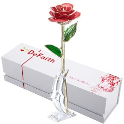 Valentines Day Gifts for Wife:Real Rose Dipped In 24K Gold