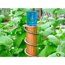Worlds Coolest: 24 Stake Rain Gauge - Copper