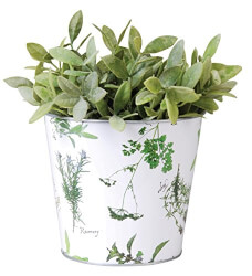 Galvanized Steel Flower Pot