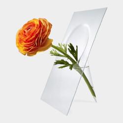 Vanishing Vase
