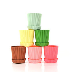 Multicolored Flower Pots